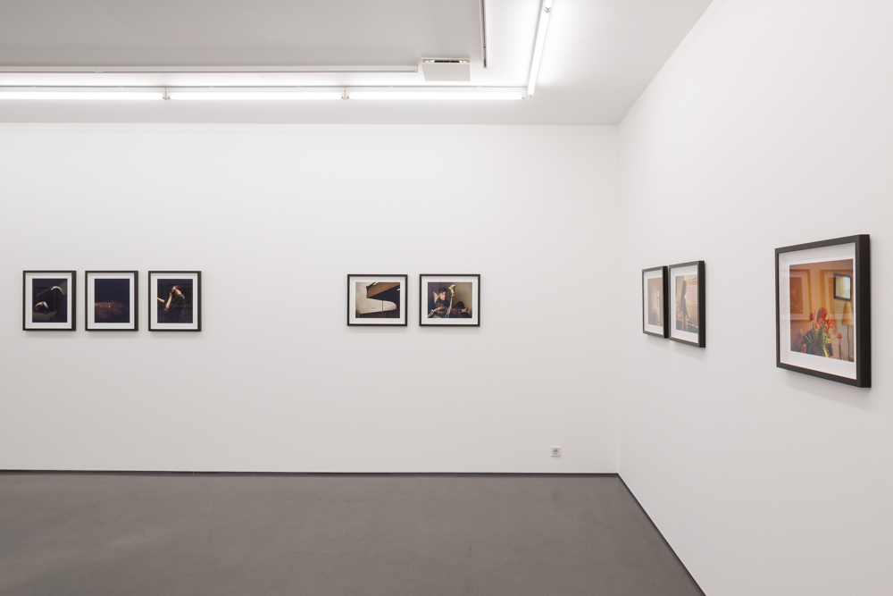 Eva Vermandel, Splinter, installation view