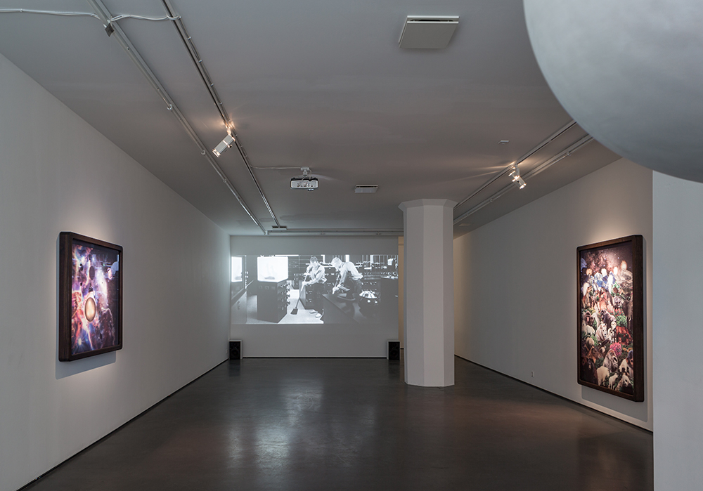 Dear Jesus, Do Something!, installation view
