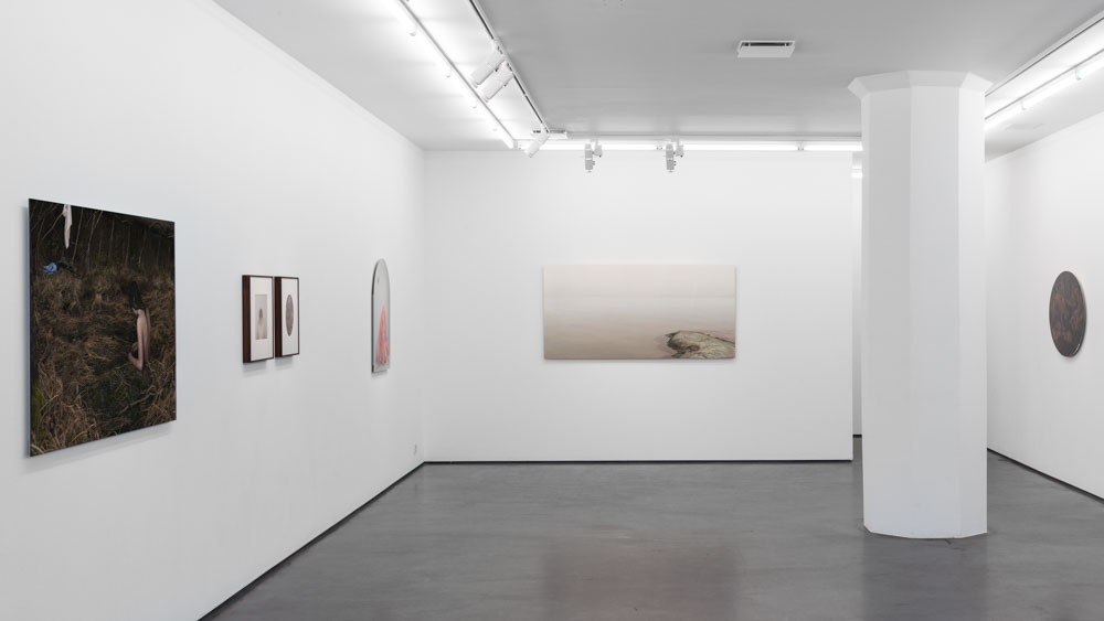 Installation view, In the Belly of the Beast