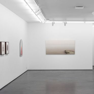 Lovisa Ringborg, In the Belly of the Beast, photography, 2 October–8 November 2014
