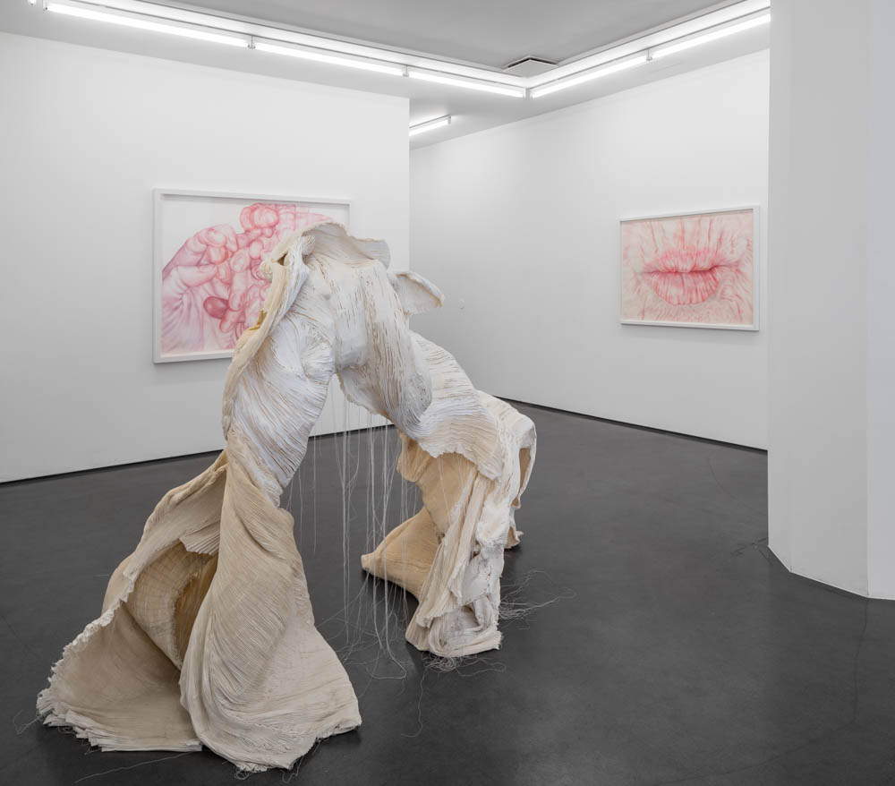 Installation view, Splendor in the touch