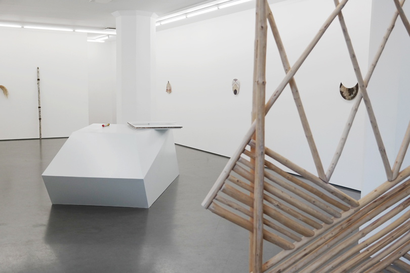 Carrier Waves, installation view